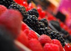 Get Your Head Around Antioxidants